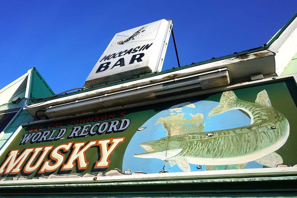 Moccasin musky | Hayward, Wisconsin