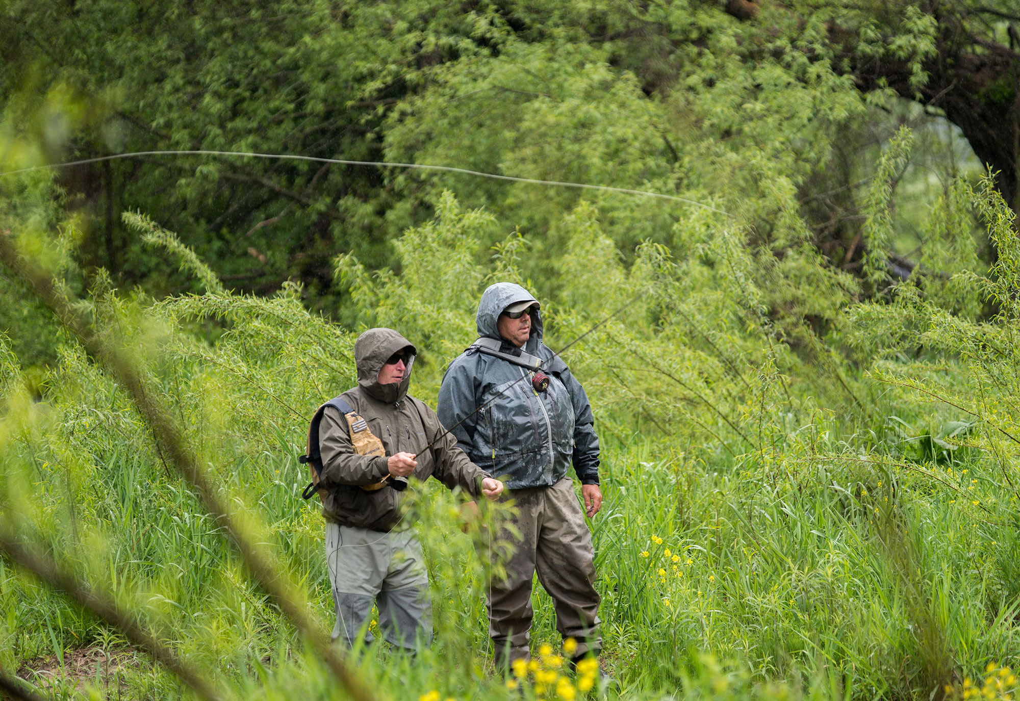 Fly fishing the driftless area around viroqua wisconsin for Driftless fly fishing