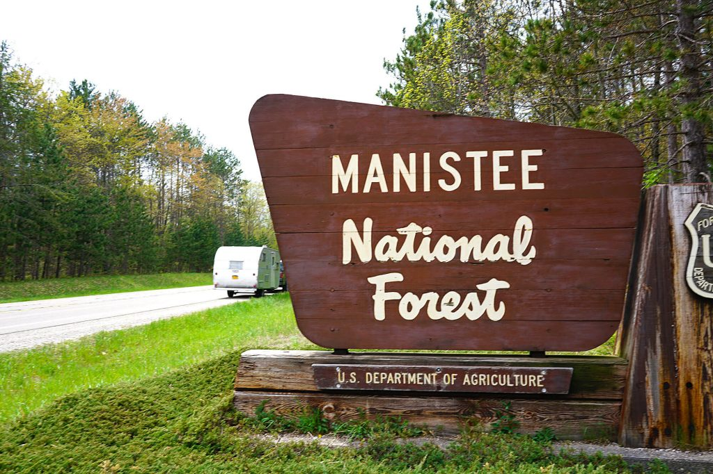 Manistee national forest on M 55