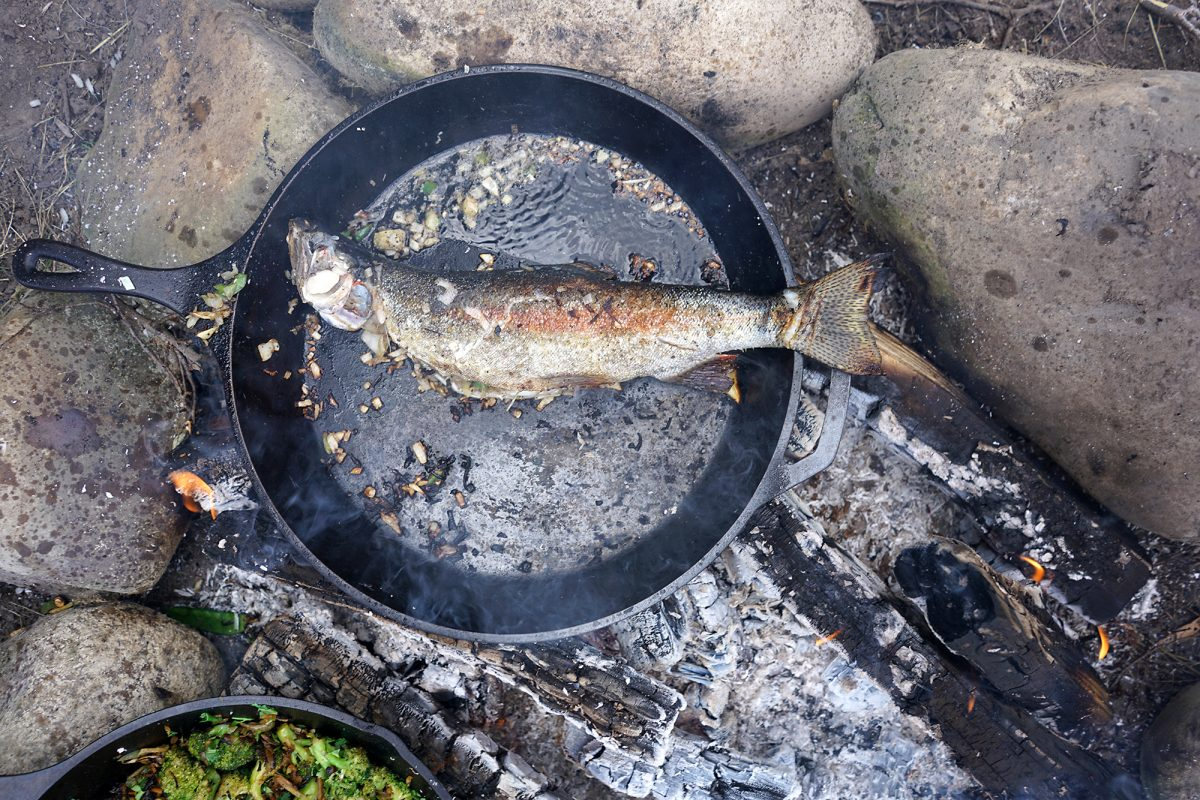 Smoky Rainbow trout for lunch by the South Fork of the Snake