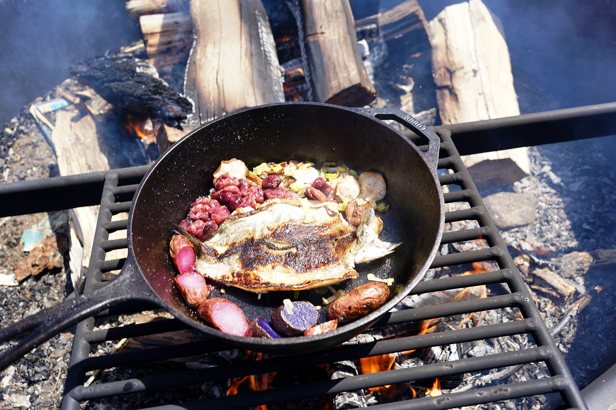 Rainbow trout over open fire