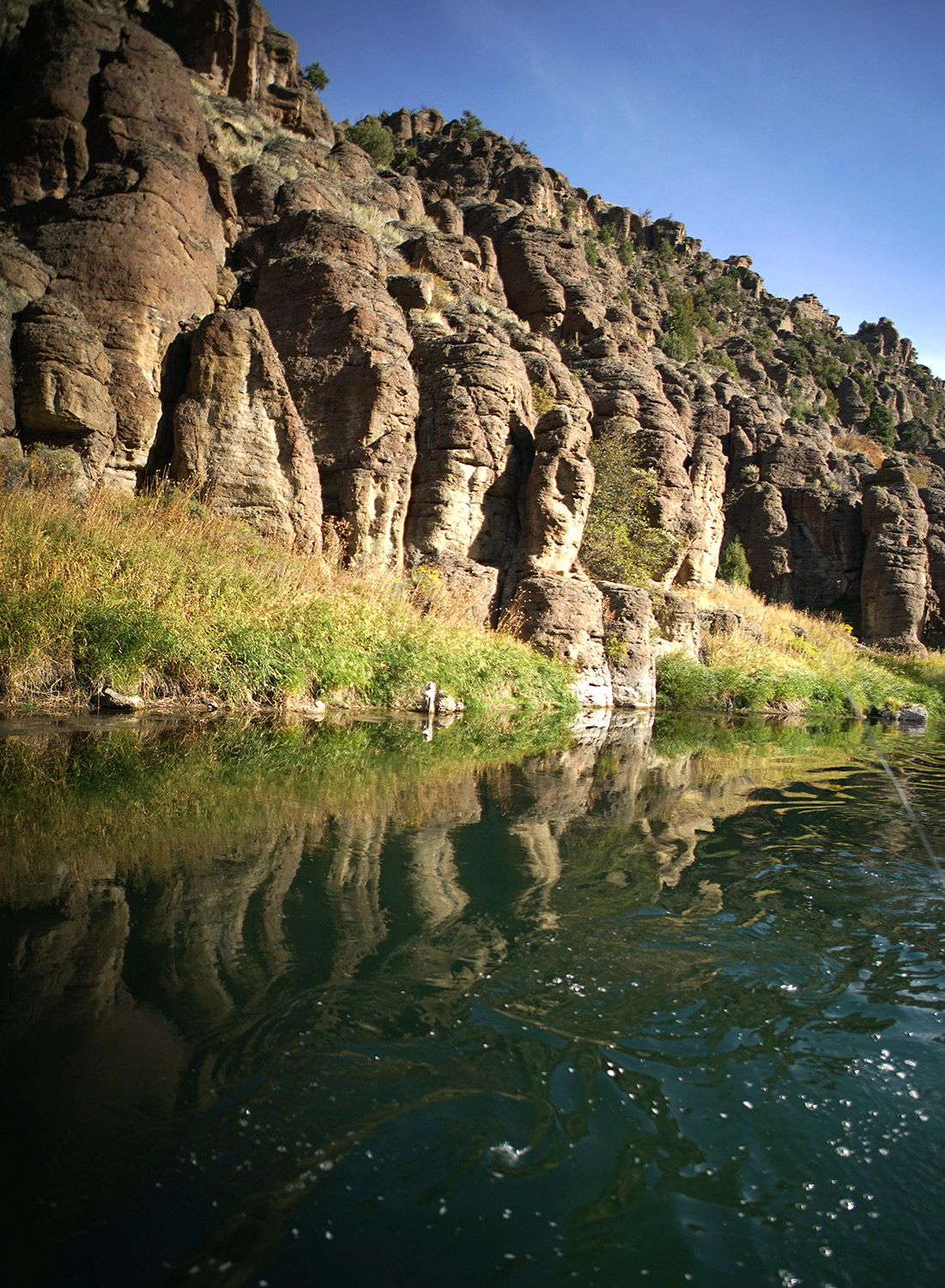 Once under 50 feet of water, now dam free volcanic cliffs surround the Teton river